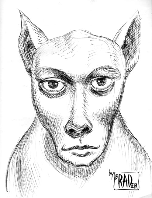 Head of the Day pen and ink illustration  by Brad Rader of human/animal blend